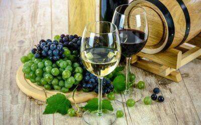 Fruškogorska vinska tura